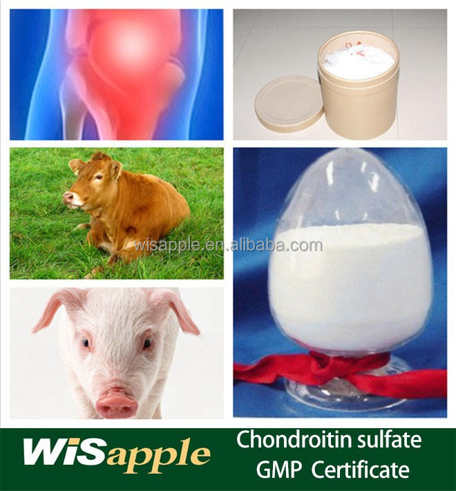 Pharmaceutical Grade High Purity Chondroitin sulfate