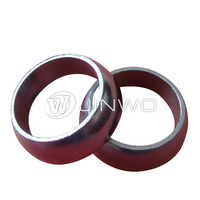 Auto parts malaysia exhaust pipe seal ring / graphite molded rings