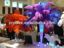 Natural dying feathers ostrich plumes for wedding decoration centerpiece
