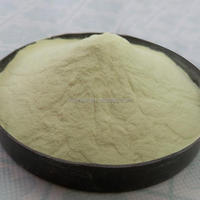 Xanthan Gum In Food And Beverage