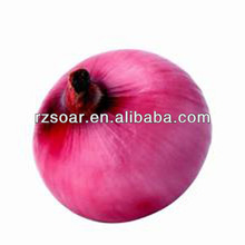 2014chinese new crop red onion