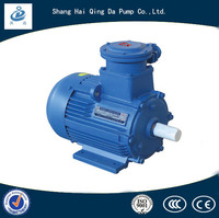 Explosion Proof Motor Three Phase Induction Motor With High Quality