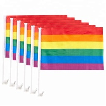 Hot Sales Plastic Pole Cheap Price Polyester Pride Car Rainbow Flag