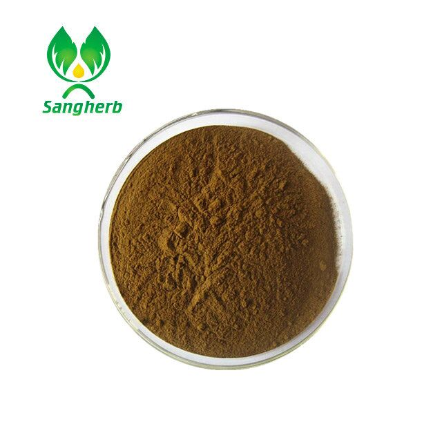 Natural herb extract angelica sinensis extract dong quai extract with ligustilide