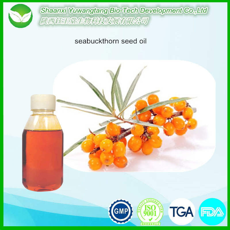 Factory price high quality seabuckthorn fruit oil / sea buckthorn seed oil