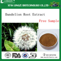 2016 new product dandelion extract 10:1, dandelion root extract Flavonoid 4% in low price for promotion