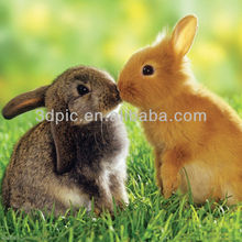 Home decorative lenticular material 3d picture of rabbits