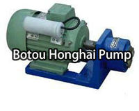 S type stainless steel samll gear oil pump/acid proof pump