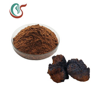 Manufacturer Supply inonotus obliquus extract with best price