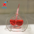 Hand Blown Borosilicate Glass Made Glass Kerosene Lamp/ Heart Shape Glass Oil Lamp