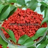 Popular sell Ningxia Dried Fruit Products Dried Goji Berries from Acme fate international LTD