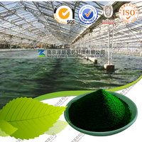 Factory Supply Green Superfood USDA Organic Green Alga Spirulina Powder