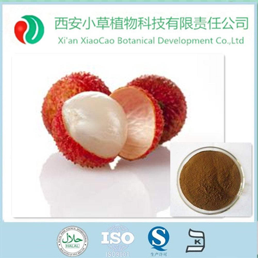 100% natural high quality fresh Lychee seed extract CAS520-23-432