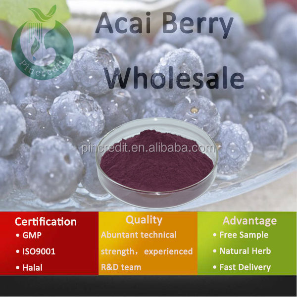Acai Berry Brazil/Acai Berry Powder/Acai Berry Wholesale
