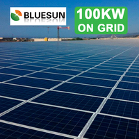 Bluesun on-grid 100kw solar power energy generation system for industrial project