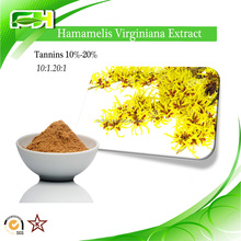Factory Supply Tannin 10%-20%. Hamamelis mollis Extract