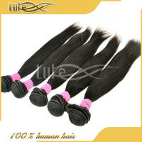 Wholesale 6A Grade straight hair 100% unprocessed cambodian human hair with amazing quality isis hair