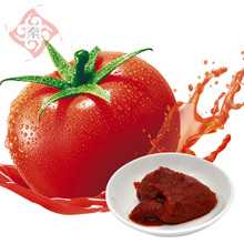 Healthy Tomato Sauce with competitive price
