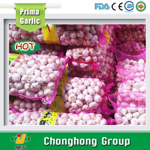 2017 Best quality normal white white garlic