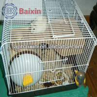 China factory supply Dog Crate/Aviary bird cage/zoo cages stainless steel indoor dog cages/Best Price Chain link fence Zoo Large