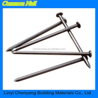 2 inch wire nail with smooth shank for construction