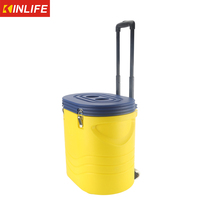 Car Cooler Box For Camping & Outdoor Activities