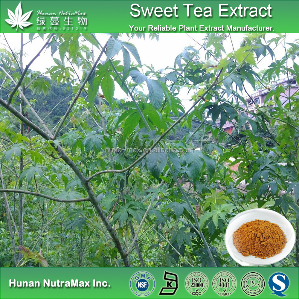 Sweet tea leaf extract -- Rubus Suabissimus S. Lee P.E. -- 70%Rubusoside -- 64849-39-4