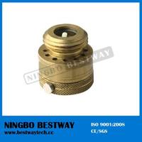 Back Flo Preventer Brass Hose Vacuum