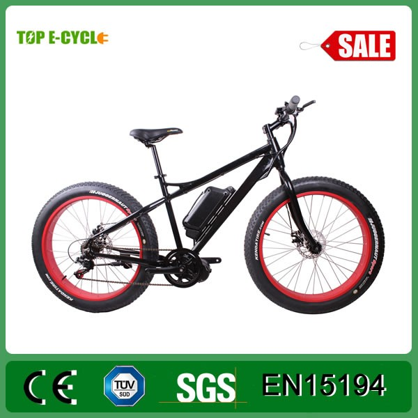TOP/OEM high power lithium battery electric vehicle/fat bike electric bike made in china