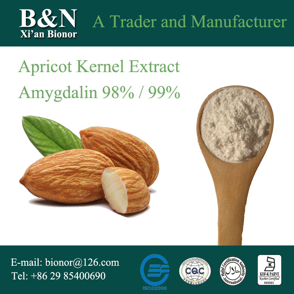 natural apricot kernels extract/bitter apricot kernel extract amygdalin