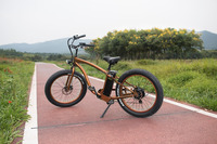 New 36v 350w hummer electric bicycle popular in europe market