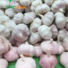 /product-detail/natural-garlic-fresh-red-chinese-high-quality-fresh-garlic-60620842694.html
