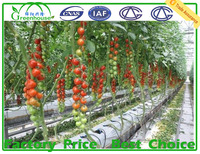200 micron plastic film green house