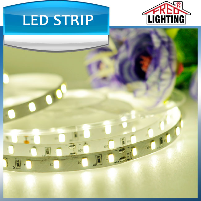CE RoHS Approved Epistar 5050 14.4W/m 12V IP68 flexible LED Stripes