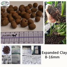 Hydro Leca Used for Roof Garden Plantings Lightweight Clay Balls
