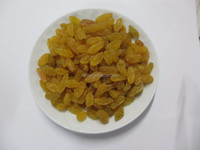 new product of green or sultana or golden raisin etc. dried raisin fruit with good price
