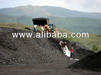 Steam Coal 6100 Kcal/Kg