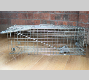 Rabbits, Squirrels, Mink, Feral Cat, Vermin,Animal Folding Cage trap