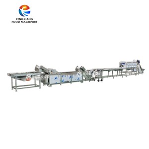 Automatic Ginger Washing Peeling Slicing Processing Machines