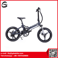 newst china folding bike/ lowrider bicycle/ elektro bike