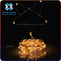 indoor or outdoor battery operated Christmas copper wire mini led string lights copper string lights
