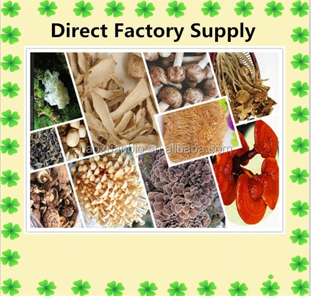 100% Nature different kinds of mushroom powder by Factory Supply