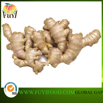 Chinese Fresh Air Dry Ginger Specification Dry Ginger