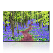 Bulebell Forest Path Canvas Printing Art/Tree Picture on Canvas/Landscape Canvas Painting Printing
