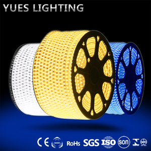 5050 3014 2835 Chip 8MM 10MM copper 60/120/ 180/240 Pcs LEDs Double Row Led Strip Light Guzhen Factory Direct