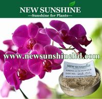 Slow released compound organic amino acid fertilizer