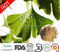 Factory supply Ginkgo Biloba Extract, Lowest price Ginkgo Biloba Extract powder