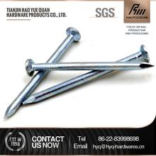 Professional large steel nails concrete nail