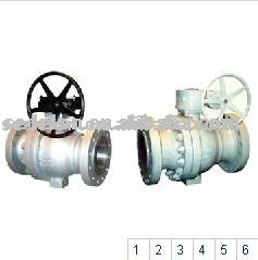 Trunnion mounted ball valve gear operate
