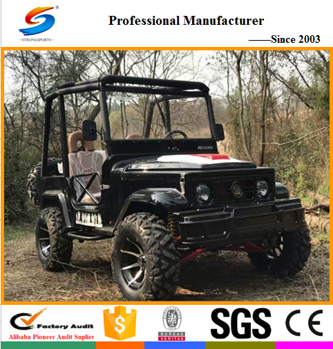 ATV18 Hot sell Go Kart and Mini Jeep with CE,New Design Racing ATV and Sports Go Cart with 300cc Oil Cold